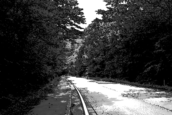 森に囲まれた道路