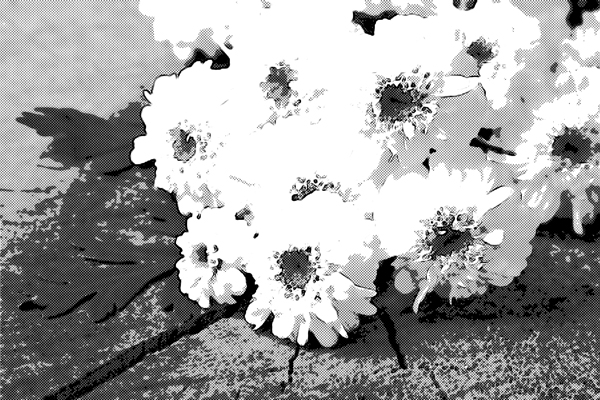 供え花 仏花