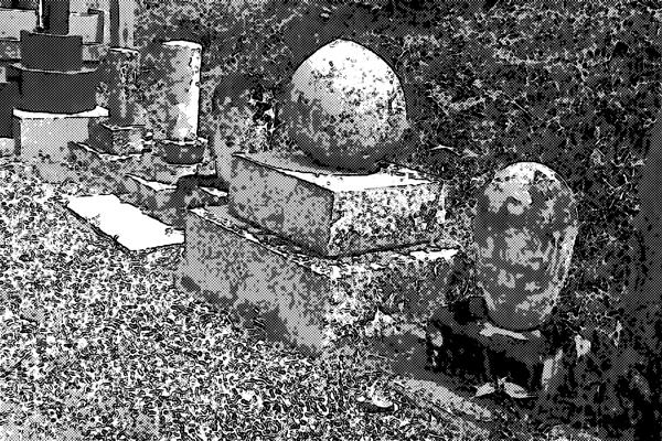 墓地 墓石