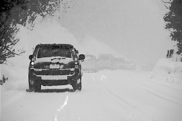 車の上に積もっていた雪が・・・