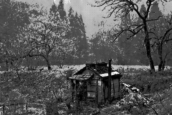 山で見つけた養魚溜池の跡地と一軒の小屋