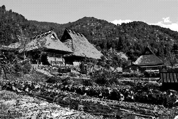 本当は怖かった日本の農村