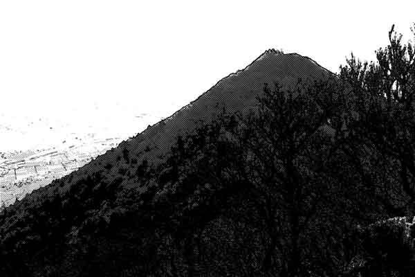 山の中国人に目を付けられたジイサン