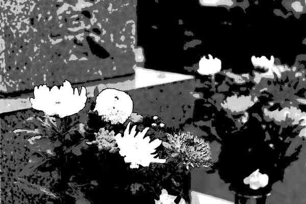 亡きお爺ちゃんに墓前でお願いしたこと